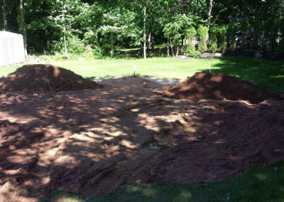 Lawn before maintenance rockland county