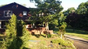 yard landscaping orangeburg