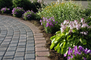 patio landscaping orangeburg