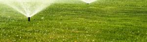 lawn care orangeburg