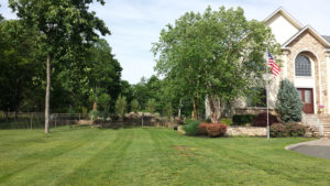 Lawn after maintenance rockland county